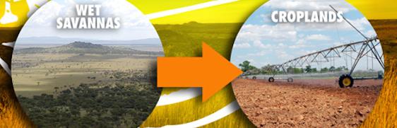 Africa_Croplands[2]