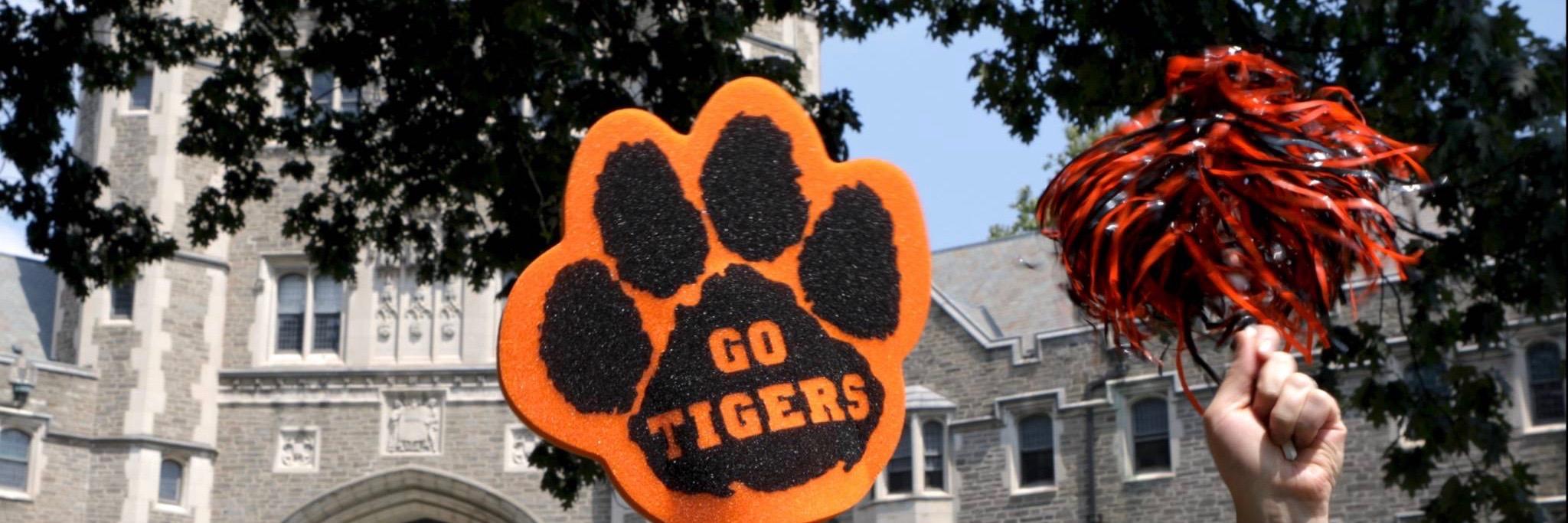 Go Tigers Princeton Campus