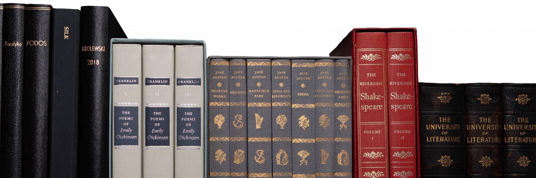 Books on Diana Fuss's bookshelf